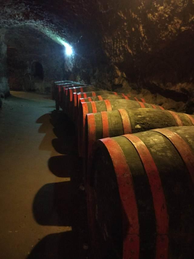 Bulgarian cellar